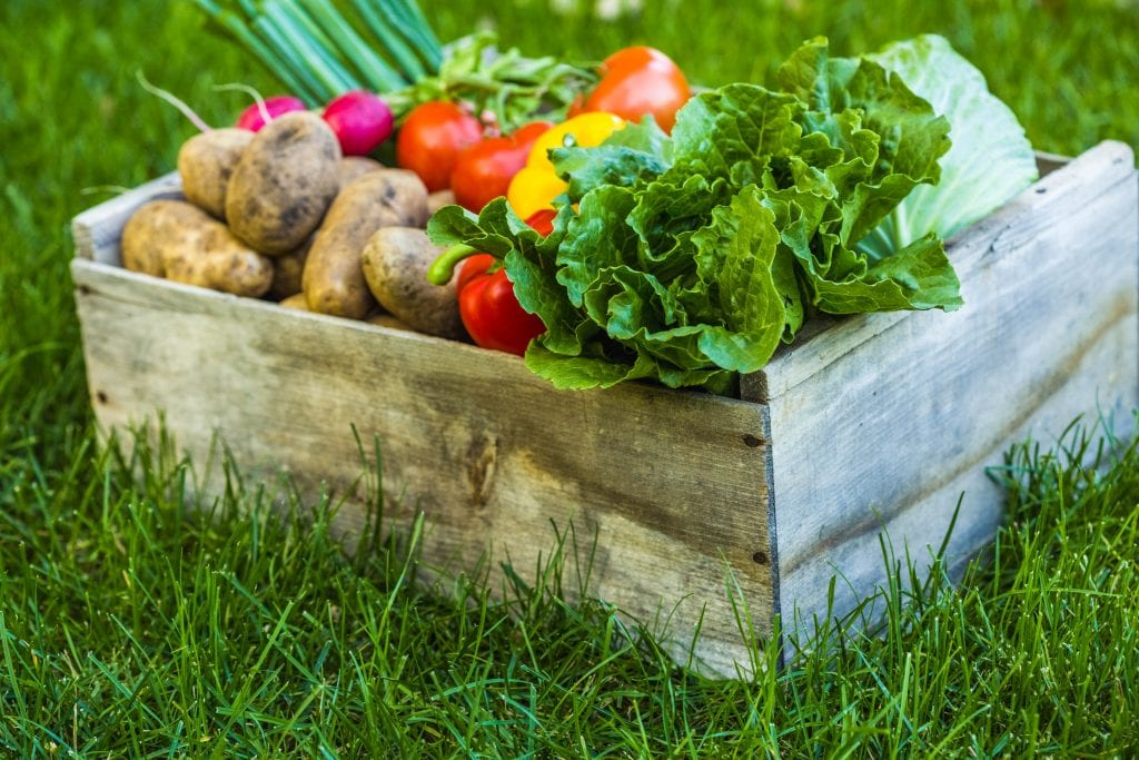 The Ease Of Adding Fruits And Veggies To The Home Garden